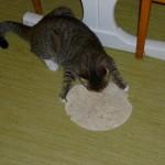 Pitabröd, DET är gott! Hittade det på bänken och det var alldeles ledigt.