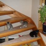 Nu kan vi gå i trappan! Men oj vad det är högt.