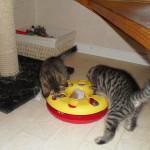 Putte och Hedvig med en rolig leksak