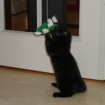 Nora leker med en pipfigur på pinne