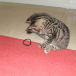 Hedvig leker med ett hårband