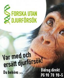Forska utan djurförsök