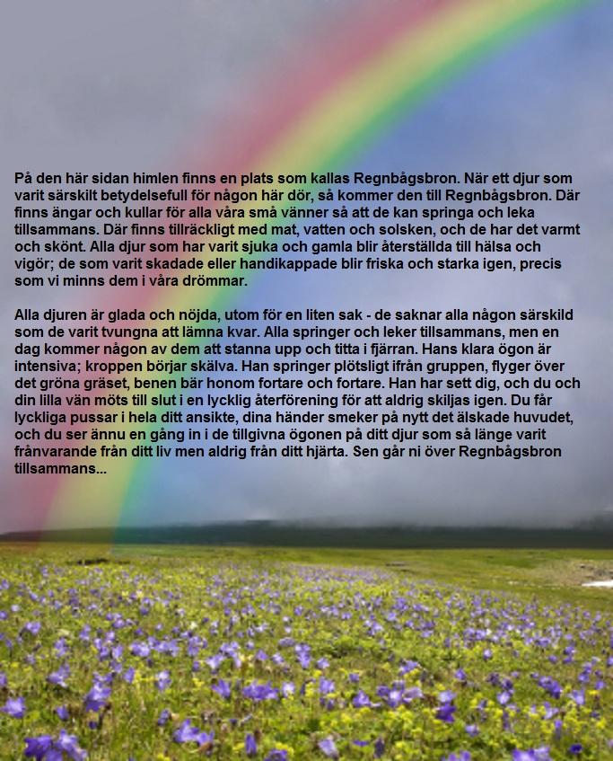 En vacker text, av okänd författare, förmedlad av min vän Ylva.